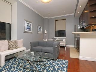 Wonderful and Neat 2 Bedroom, 1 Bathroom Apartment - Fully Furnished, New York City