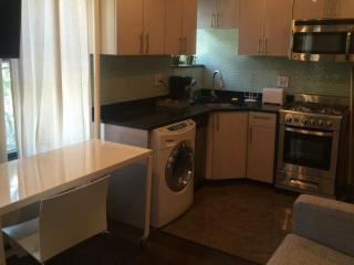 Simple and Modern 1 Bedroom Apartment - New York, Long Island City