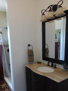 Guest Vanity and shower