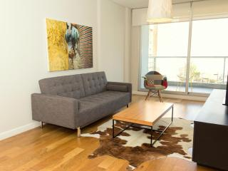 Modern 1 Bedroom Apartment in Stylish Palermo Soho, Buenos Aires