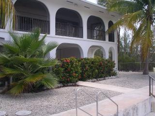 Sparkling canalfront house surrounded by palms, Big Pine Key