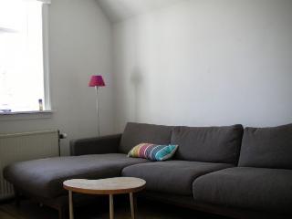 Large two storey Copenhagen apartment