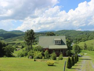 """A LITTLE TLC""-SPA*MTN VIEWS*NEW RIVER*FP*PRIVACY!"