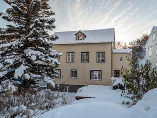 Beautiful luxury wooden house, Akureyri