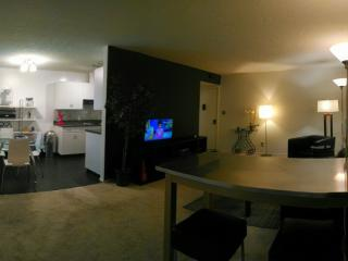 GORGEOUS AND FURNISHED 1 BEDROOM CONDO IN MOUNTAIN VIEW, Mountain View