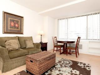 ELEGANT AND CLEAN FURNISHED 1 BEDROOM 1 BATHROOM APARTMENT, Arlington