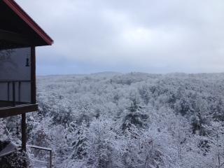 Breezeway looking South towards Lake Blue Ridge Basin (Winter)