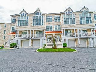 40146 Salt Meadows, Fenwick Island