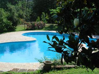 Luxury lake front villa near Rome, Private Pool (salt, no chlorine),superb views