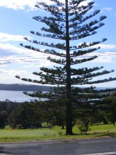 Tuross Golf course with wonderful views