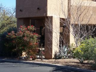cozy condo in beautiful Catalina foothills, Tucson