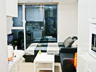 20sec GangNam Station LUXURY BrandNew APT