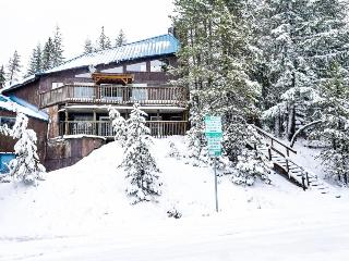 Adorable and spacious cabin in the woods - close to ski access!, Government Camp