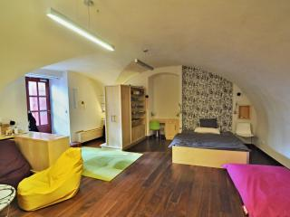 Cosy Apartment just under the Castle above the Charles Bridge