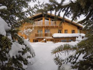 Chalet Alpina Mont Blanc 200m from the ski lifts