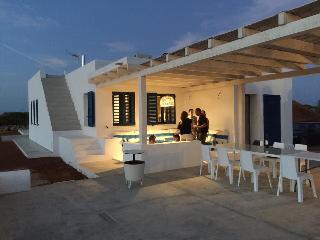 Casa de lujo de nueva construcción en La Mola