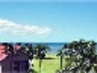 Penthouse Ocean Front Ocean View Condo Free Wi-Fi, Kihei