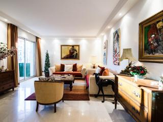 Cannes Center Luxurious 2 Bedroom Vacation Home