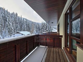 St. Peter Apartment, Spindleruv Mlyn