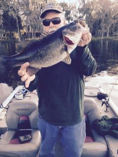 Bass caught 20 Feb 2016