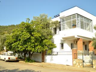 319- 6BR Luxury villa in Bodrum City Center