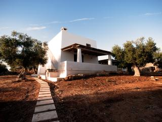 Villa and Trullo in Salento with private pool