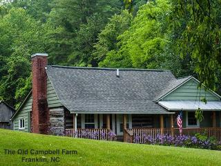 Historic Farm - Easy Access, Restful Getaway, Franklin