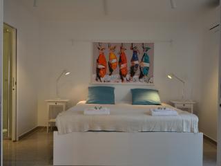 Mandariniers 22A - 3 bedroom/3 bathroom, balcony, Cannes
