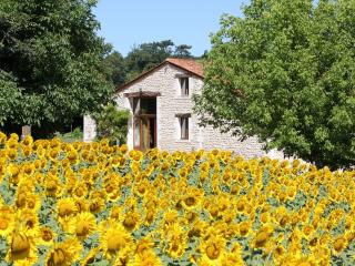 Stone Barn with Private Pool and Superb views, Barbezieux-Saint-Hilaire