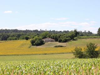 This is Chez Poirier in the middle, a perfect isolated setting amongst sunflowers and cognac vines