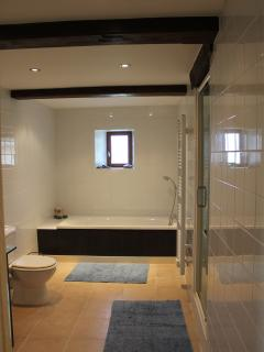 Family bathroom and shower room