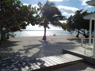 Andros Bay Cottages - Bonefishing