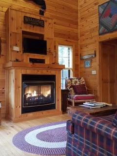 Blue Ridge Parkway Cabin Rentals 2018. 40' ceilings!