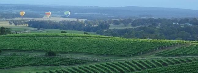 Hot air balloons over Old Hillside Homestead's Vineyard