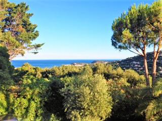 Air-conditioned villa with pool for 12 persons, Cavalaire-Sur-Mer