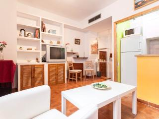 Santa Cruz one bedroom apartment free wifi, Sevilla