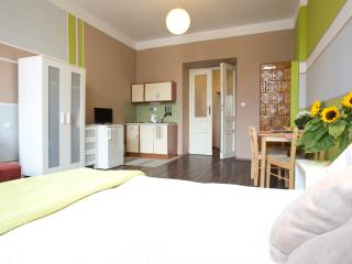 16 Central, Cool Comfortable flat, Cracovia