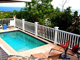 Open X-mas 12/21-28, New Years 12/28- 1/4, 2 Bed/2BAth, A/C, Pool,Wi-Fi,