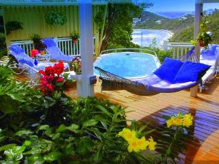 ,Over looking Hart Bay, 4Bed, 4Bath, Pool, Close to Cruz Bay