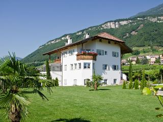Konfortable Ferienwohnungen mit großer Liegewiese, Termeno