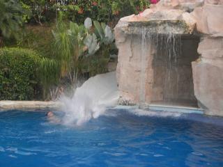 Los Lomas, Los Suenos, Playa Herradura, Pool