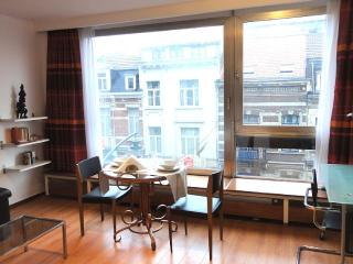 Lovely studio in the heart of the European Quarter, Brussel
