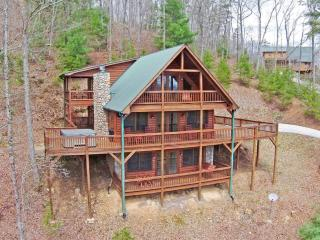 Eagles Perch Lodge -expansive decks, mountain view, Blue Ridge