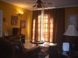 Executive 1 bedroom apt.