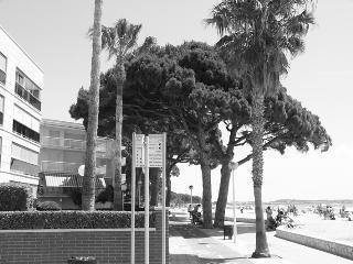 Apartamento en alquiler en 1a linea de playa