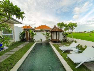 2 BDRM ANNA VILLA 4 with paddy view from Private Pool in Sanur