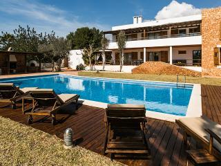 Octopus Retreat, luxury villa in Ibiza