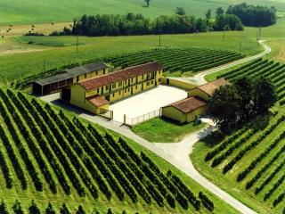 Antica tenuta 'Monferrato Wine Dreams', Pontestura