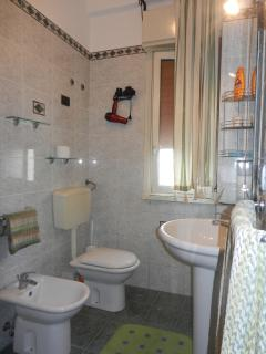 Bath room with hair dryer