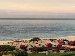 Amazing one bedroom condo in one of the most exclusive areas in Cabo,